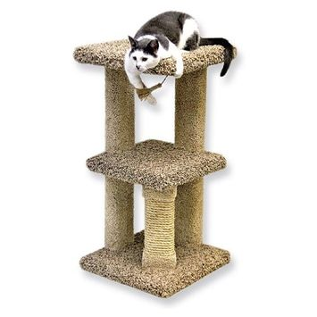 Beatrise Kitty Nest Cat Condo