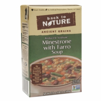 Back To Nature Reduced Sodium Soup Minestrone with Farro 17.4 oz