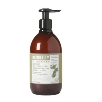 Upper Canada Soap   Candle Upper Canada Soap And Candle Naturally Nourishing Body Lotion, Wild Mint Lime, 12-Ounce Bottle (Pack of 2)
