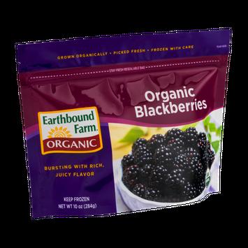 Earthbound Farm Organic Blackberries