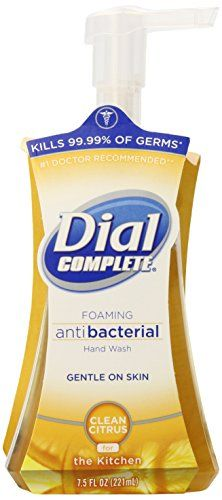 Dial 174 Complete Foaming Hand Wash For The Kitchen Reviews 2020
