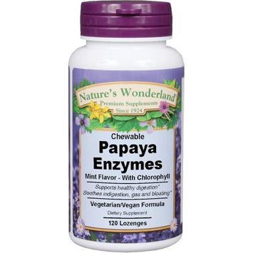 Nature's Wonderland Papaya Enzyme, 120 Chewable Lozenges (Pack of 4)