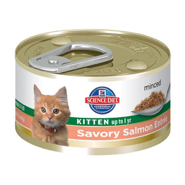 Hills Pet Nutrition Science Diet Savory Salmon Kitten Food 5.5oz