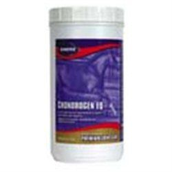 Kinetic Technologies LLC Chondrogen Eq Powder, 75 oz.
