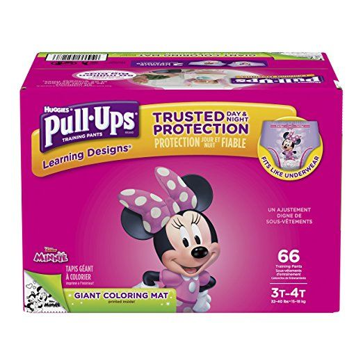 2T-3T Pull-Ups Learning Designs Training Pants for Girls