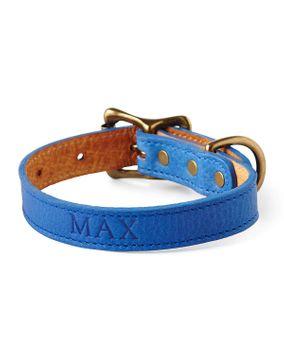 Graphic Image Personalized Medium Dog Collar, Black