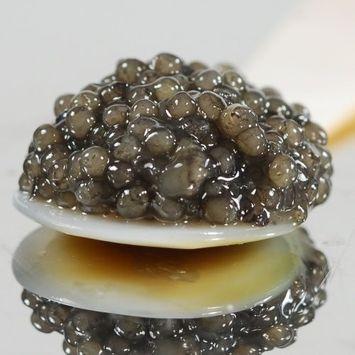 American Paddlefish Caviar Malossol - 7 oz