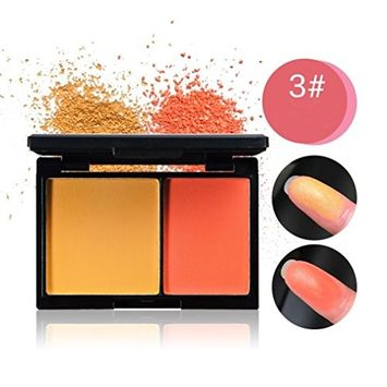 RNTOP New 2 Color Professionl Makeup Eyeshadow Camouflage Facial Concealer Blush