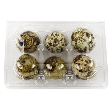 Plastic Quail Egg Carton Holds 6 Eggs Clear Tray Holds Half-Dozen Eggs (10-Pack)