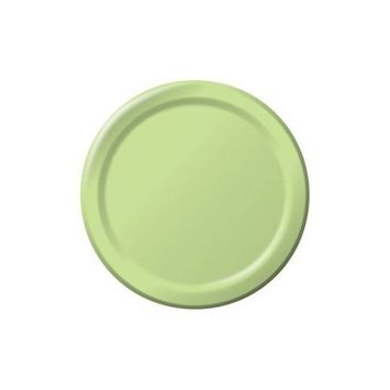 Creative Converting Touch of Color 24 Count Paper Banquet Plates, Pistachio