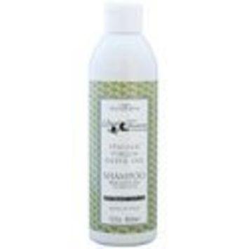 13.5 oz Organic Italian Virgin Olive Oil Dog Shampoo