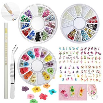 36pcs Dried Real Flowers Nail Art Decoration Kits 2 Wheels Acrylic Nail Rhinestones Gems Mini Tweezers Fake Diamond Stones Beads Picker Pencil 4 Sheet Nail Decal Stickers