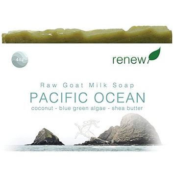 NATURAL BAR SOAP – Organic ingredients – Essential Oils – Chemical Free - Nourishing Face and Body Bar for Men, Women, Teens – Made in USA - Renew - Pacific Ocean - Western Soil - 2PACK