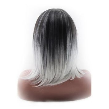 Gradient Color Long Full Straight Grey& White Hair Wig + Wig Cap + Wig Comb