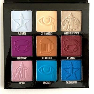 Shane Dawson X Jeffree Star Mini Controversy Palette In Hand