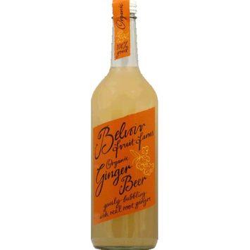 Belvoir Fruit Farms Ginger Beer 25.4oz Pack of 12