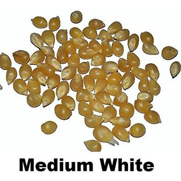 Amish Country Microwave Popcorn Lite Natural Medium White