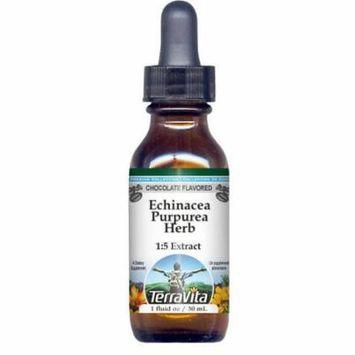 Echinacea Purpurea Herb Glycerite Liquid Extract (1:5) - Chocolate Flavored (1 oz, ZIN: 522420)