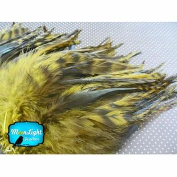 1 Dozen - Short Olive Grizzly Rooster Hackle Feathers