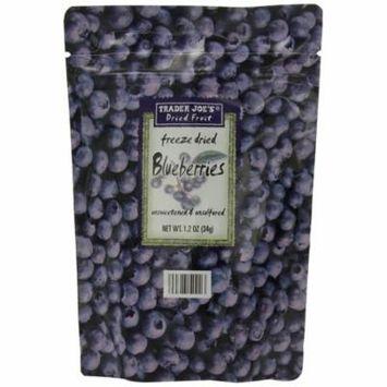 Trader Joe's Freeze Dried Blueberries Unsweetened & Unsulfured 1.2oz