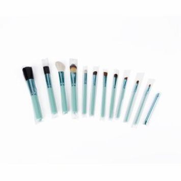Blue 12pcs Black/Blue Professional Makeup Cosmetic Animal Brush Blusher Eyebrow Eyeliner Foundation Powder Brushes Set Worldwide sale